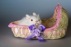 Stuk speelgoed konijn in een mand royalty-vrije stock afbeelding