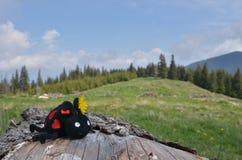 Stuk speelgoed lieveheersbeestje, gele paardebloem, berglandschap stock afbeeldingen