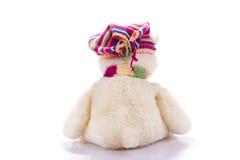 Stuk speelgoed teddybeer van rug Royalty-vrije Stock Afbeelding