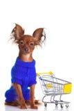 Stuk speelgoed Terrier met boodschappenwagentje op wit. Grappig weinig D Stock Foto