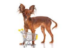 Stuk speelgoed Terrier met boodschappenwagentje op wit. Grappig weinig D Royalty-vrije Stock Afbeelding