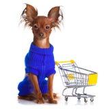 Stuk speelgoed Terrier met boodschappenwagentje op wit. Grappig weinig D Stock Afbeelding