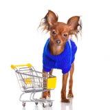 Stuk speelgoed Terrier met boodschappenwagentje op wit wordt geïsoleerdo dat. Stock Afbeeldingen