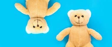 Stuk speelgoed van het twee het leuke bruine teddyberenkind met open wapens en hoofden zij aan zij bovenkant - neer in tegenoverg royalty-vrije stock foto's
