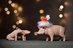 Stuk speelgoed varken in GLB van de Kerstman royalty-vrije stock afbeelding