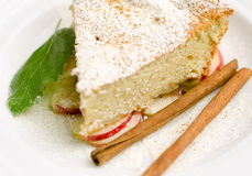 Stuk van appeltaart met kaneel Stock Fotografie