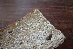 Stuk van brood met schimmel royalty-vrije stock afbeelding