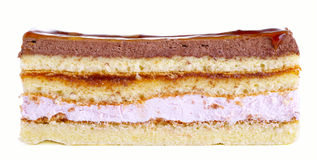 Stuk van cake met verschillende lagen Stock Foto