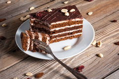 Stuk van chocoladecake Stock Foto