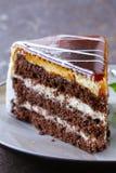 Stuk van heerlijke dessert feestelijke cake met chocolade Stock Afbeelding