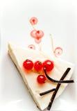 Stuk van kaastaart met rode aalbes Stock Foto's