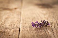 Stuk van Lavendel Royalty-vrije Stock Foto's