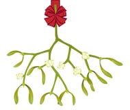 Stuk van maretak vector illustratie