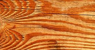 Stuk van oud aderhout Royalty-vrije Stock Foto