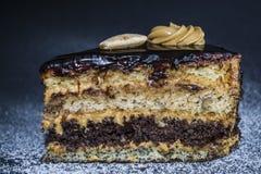 Stuk van smakelijke chocoladecake met condens en papaver, verschillende lagen Met amandelen en room Eigengemaakte gebakjes royalty-vrije stock afbeelding