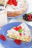 Stuk van zoete cake met rode aalbessen Royalty-vrije Stock Foto's