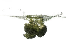 Het bespatten van broccoli Royalty-vrije Stock Foto