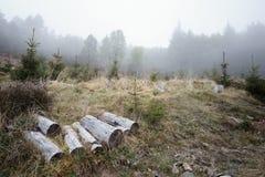 Stukken hout Royalty-vrije Stock Fotografie