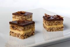 Stukken van een chocoladecake op een plaat Royalty-vrije Stock Foto's