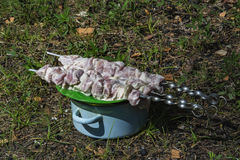 Stukken van vers die vlees op een vleespen worden de vastgebonden liggen op een plaat Royalty-vrije Stock Foto