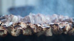 Stukken van vlees op vleespennen op de grill worden geroosterd die stock footage