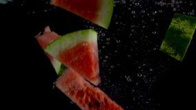 Stukken van watermeloendaling en vlotter in water, zwarte achtergrond stock video