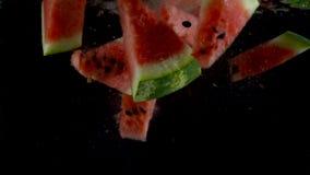 Stukken van watermeloendaling en vlotter in water, zwarte achtergrond Langzame Motie stock video