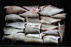 Stukken vissen Royalty-vrije Stock Foto's