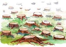 Stump. Nature environment - deforestation by man Stock Photo