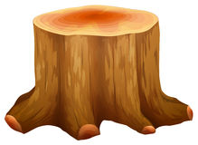 A stump of a big tree Stock Photography