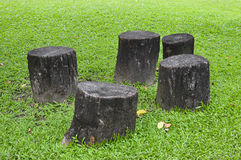 Stump chair Stock Images
