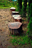 Stump chair in the park. Stump chair in the garden Stock Photography