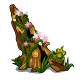 Stump covered with plants, flowers, grass and toad vector illustration
