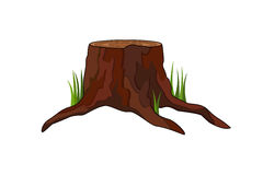 Stump Royalty Free Stock Photo