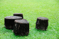 Stump on grass. Black four Stump on grass Royalty Free Stock Images