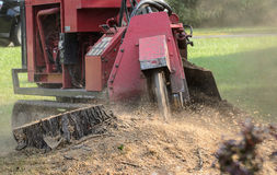Stump Grinder Machine Grinding Tree Stump Royalty Free Stock Photos