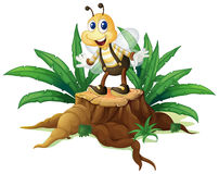 A stump with a happy bee Stock Images