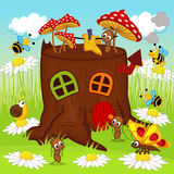 Stump house insects Stock Photography
