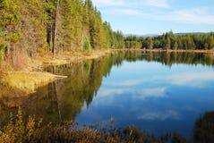 Stump Lake royalty free stock images