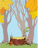 Stump On The Autumn Background Royalty Free Stock Photos