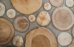 Stump patter background. Stump texture, stump tile Royalty Free Stock Photos