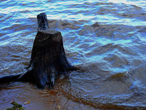 Stump in river. Royalty Free Stock Photos