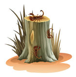 A stump with scorpions Royalty Free Stock Photos