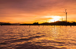 Stump silhouette. This happening scenery located at kenyir lake terengganu malaysia during sunset Royalty Free Stock Photography