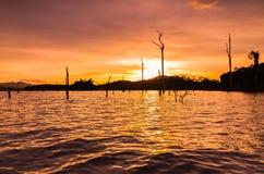 Stump silhouette at lake during sunset. This happening scenery located at kenyir lake terengganu malaysia during sunset Stock Photos