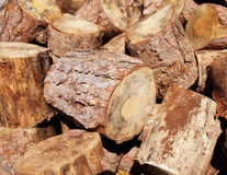 Stump stack background, firewood Stock Photos