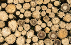 Stump stack background, texture Stock Photos