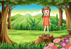 A stump with a tall child Stock Images