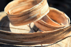 Stump of trees with rings of growth of a shiver are twisted from above. Concept of carpentry and home-making. Tree stump with growth Tree stump with growth rings Stock Image