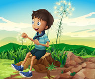 A stump with a young boy sitting Royalty Free Stock Photo